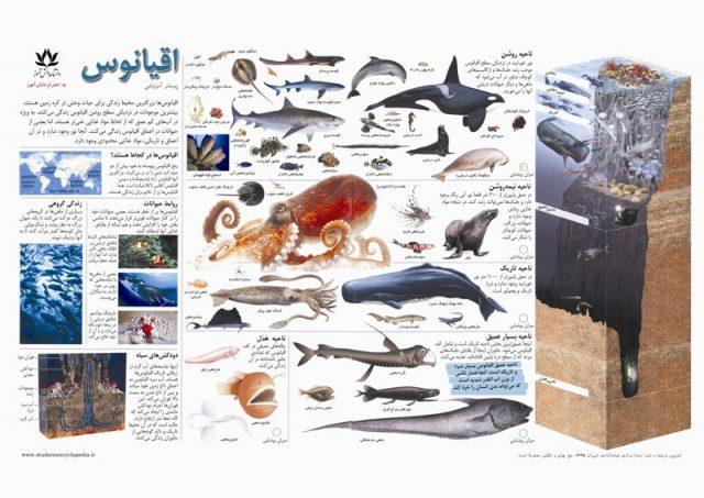 پوستر آموزشی اقیانوس و آبزیان