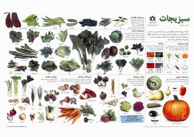 پوستر مدارس آشنایی با سبزیجان
