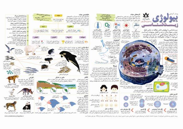 پوستر آموزشی رشته زیست شناسی برای دبیرستان