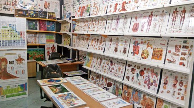 فروشگاه پوسترهای علمی و آموزشی مدارس و پزشکی